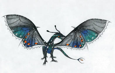 Black Swallowtail Dragon by Tinch123
