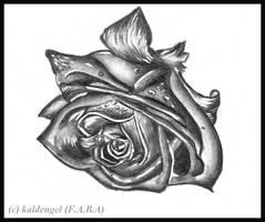 Rose I by kaldengel