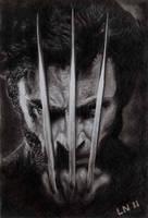 Wolverine by eugene23