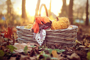 Basket by EliseEnchanted