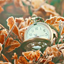 Freeze time by EliseEnchanted