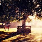 Horsey by EliseEnchanted