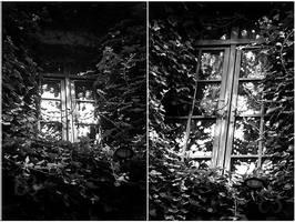 City windows by EliseEnchanted