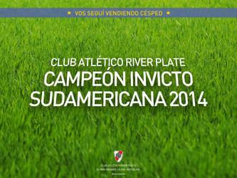River Plate, Campeon Sudamericana by fabricioabella