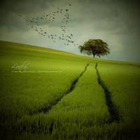 Lonely by JeanFan