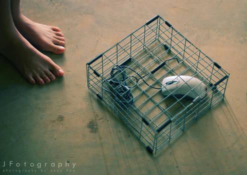 Mouse Trap by JeanFan