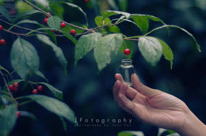Elixir by JeanFan