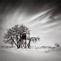 tree house by cez4r