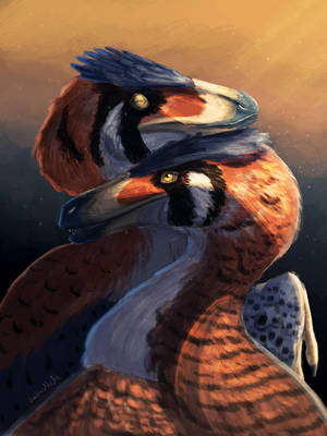 Raptor in love by UmbreoNoctie