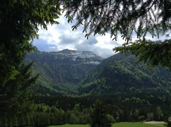 Austrian Alps by vintagevic
