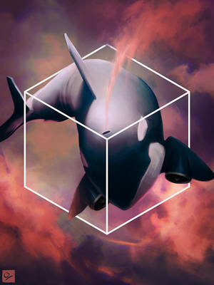 Orca Airlines by Ocetee