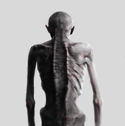 Spines. by NicholasOsagie