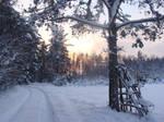 winter2 by pinkjayphoto