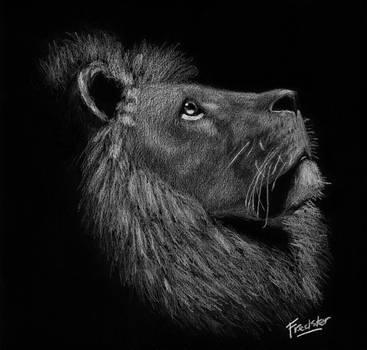 Lion White on Black by FredsterNL