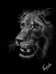 Lioness by FredsterNL