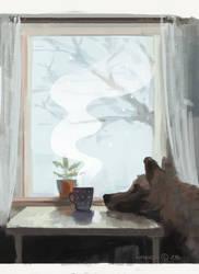 Window by xzazu2002