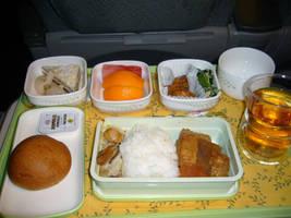 Vegan dish on the airplane by vegtomato
