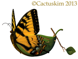 Fairy Butterfly Boat_KL by cactuskim