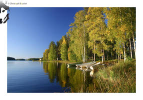 Autumn in Finland by BottledLights