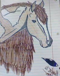 Julliet (small Ref sheet) by CowgirlUpAndGetDown
