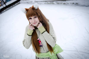 Horo from Spice and Wolf : Renewal Dress by ElleisWardrobe