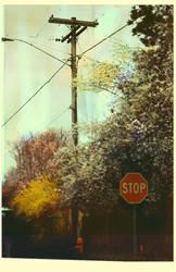 En Route by moss-koete
