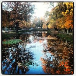 Reflection in the Tiergarten Berlin - 2012 by Albanos