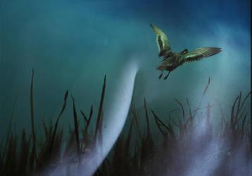 Sapiens Sapiens 15 by Helium-Raven