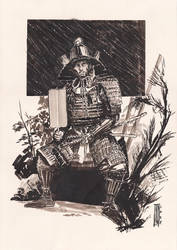 Samurai by LukaCakic