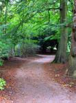 Path 4 by Avahlon-Stock