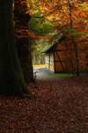 Autumn 21 by Avahlon-Stock