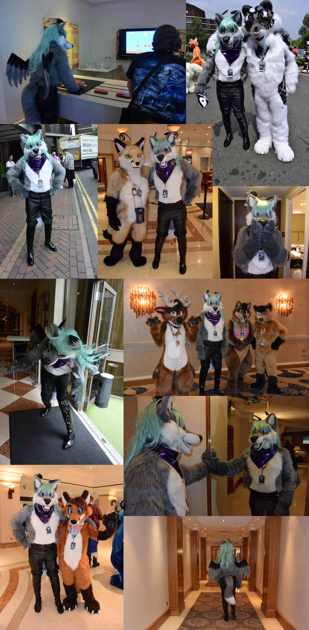 Montage: Daryil at Confuzzled 2018 - 2 of 2 by tapewolf