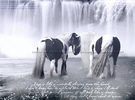 Gypsy Dream.... by FourLeggedStudio