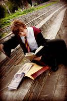 A Study of Hogwarts by Admantius