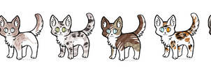 Point cat adopts #1 [6/6 OPEN] 50 EACH !! by koiffee
