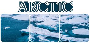 Divider Arctic II by Winzer