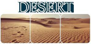 Divider Desert II by Winzer
