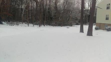 Snowy wonderland by Bowser57