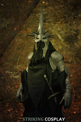 The Lord of the Rings: Witch King of Angmar 4 by StrikingCosplay