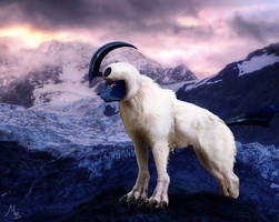 Realistic Absol by AkashaOokami