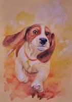 Basset hound puppy by KatreShka