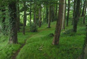gilford wood by nightwing1975