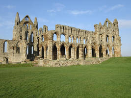 Whitby Abbey by omick