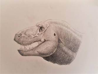 Tyrannosaurus rex head reconstruction by IAMMiguel
