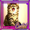 CUte Kitty by darkgarden