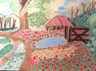 Garden poppies by Cat-Anna