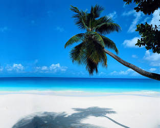 Paradise Found by boochy