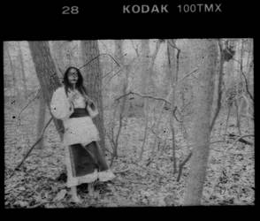 In the Woods No. 6 by sedge