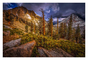 Sequoia Ridge by EtherealSceneries