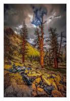 Sequoia Ridge II by EtherealSceneries